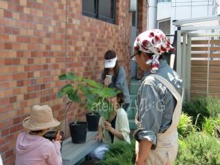 5)芽かきグループ